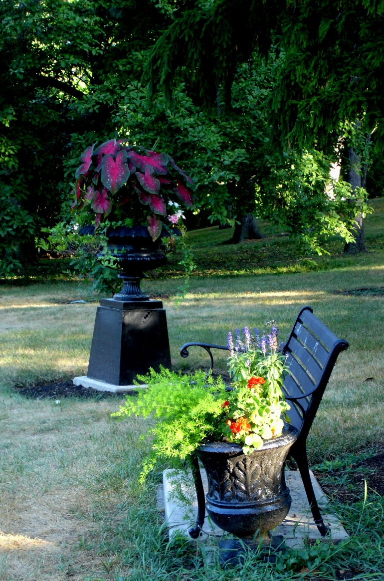 benchnflowers